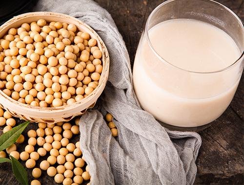 植物蛋白奶系列